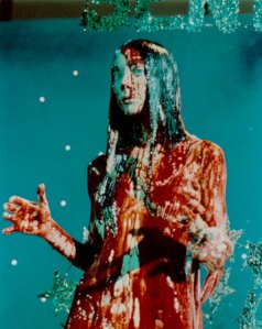 carrie-pigs-blood